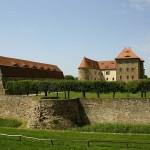 Die Wasserburg Heldrungen als Ausflugsziel nahe der Ferienwohnung.